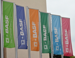 basf-germany-13-6