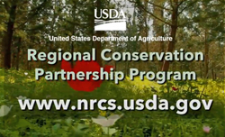usda-conservation